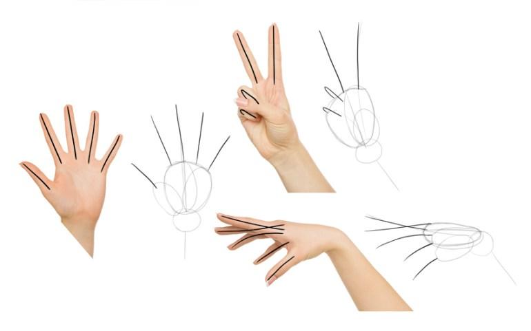 draw fingers