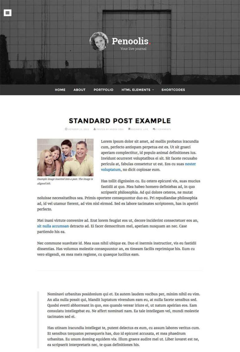 Penoolis WordPress Personal Blog Writer Theme