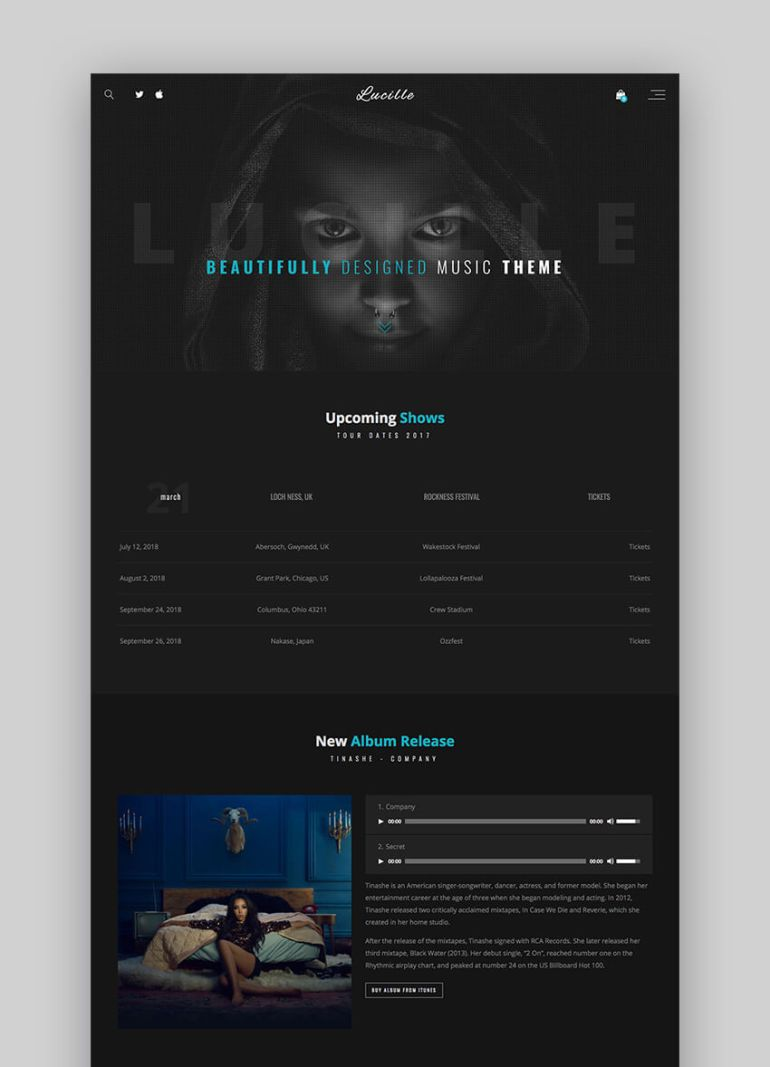 Lucille musician WordPress theme
