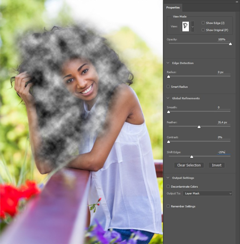 Selecting and masking background dust layer mask