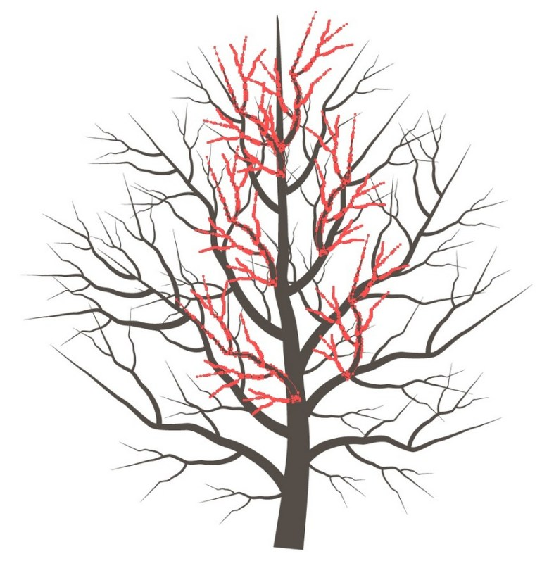 add more branches
