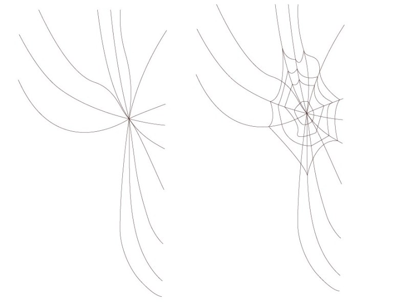 spiderweb vector