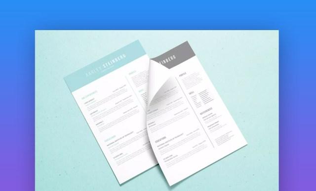 Resume minimalista 05