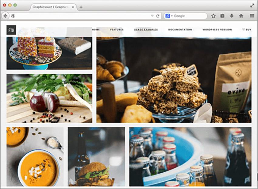 best wordpress gallery plugin