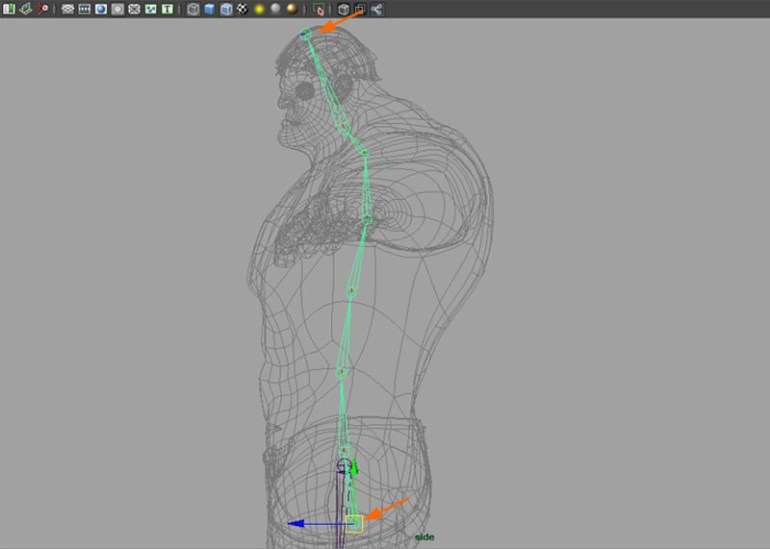 Start drawing joints