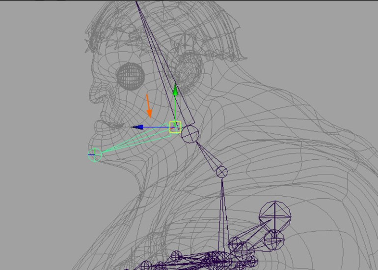 Draw the jaw joints