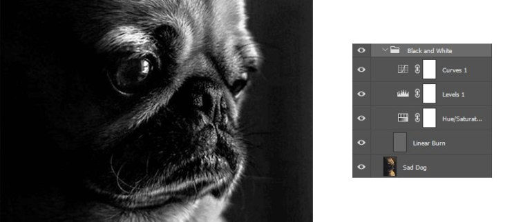 Turn Your Photos to Black and White with Photoshop