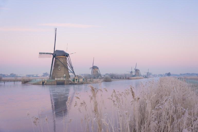 Pastel sunrise over windmills in winter