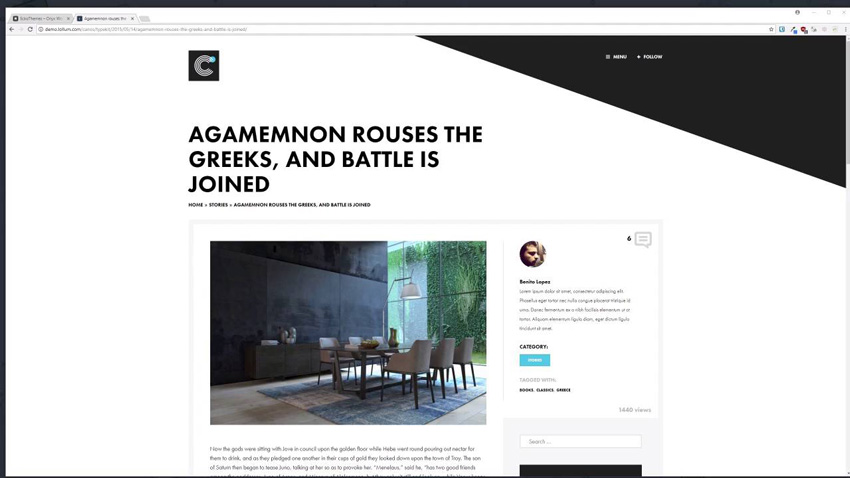 Example of a responsive WordPress theme