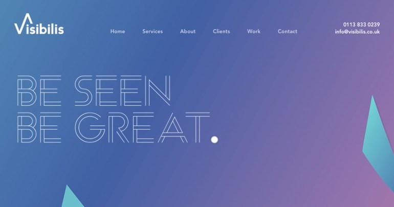 Visibilis website