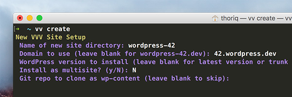 VV Prompt in Terminal Git repo to clone as wp-content leave blank to skip