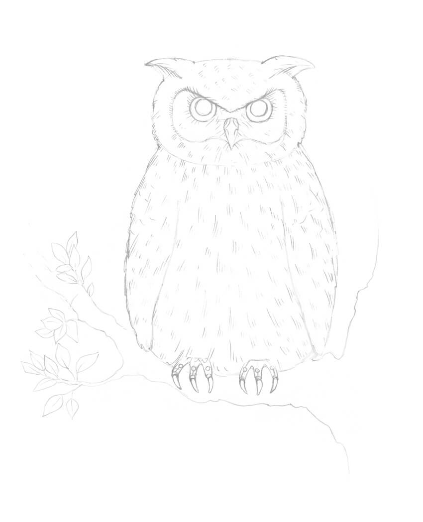hight resolution of creating the pattern of the owls body