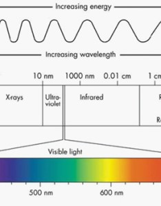 Seeing the light an overview of visible and uv vis spectroscopy also rh coleparmer