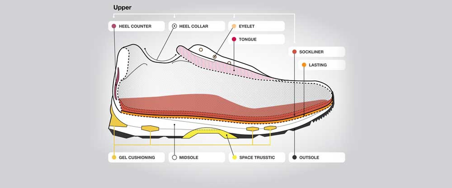 hight resolution of anatomy of a running shoe