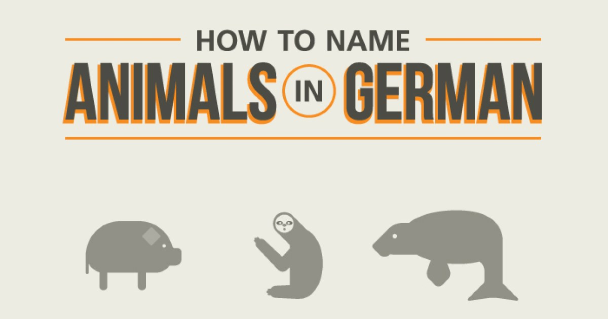 Learn German Animal Names With This Useful Flowchart | Babbel Magazine