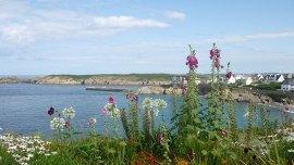 """""""Moin Moin, Bisou Bisou"""" – eine Ostfriesin in der Bretagne"""