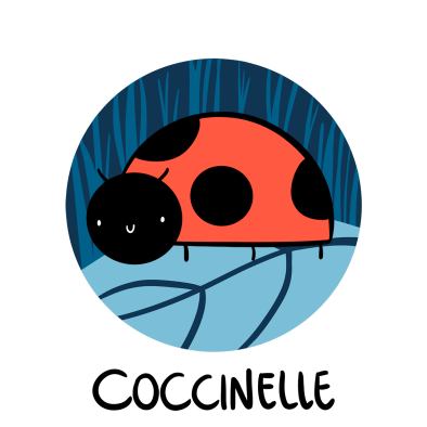 cute ladybug illustration, How to say ladybug in French, Coccinelle