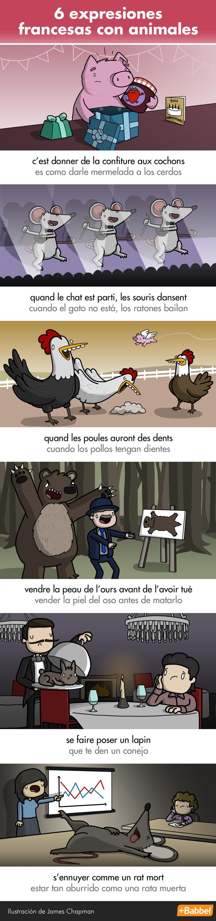 Extrañas y maravillosas expresiones con animales en francés