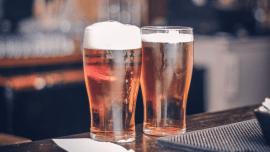 Por que a Sternburg é uma das cervejas mais populares da Alemanha?