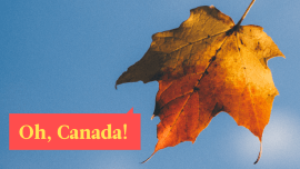 Que tipo de imigrante o Canadá procura? Veja como imigrar para o Canadá