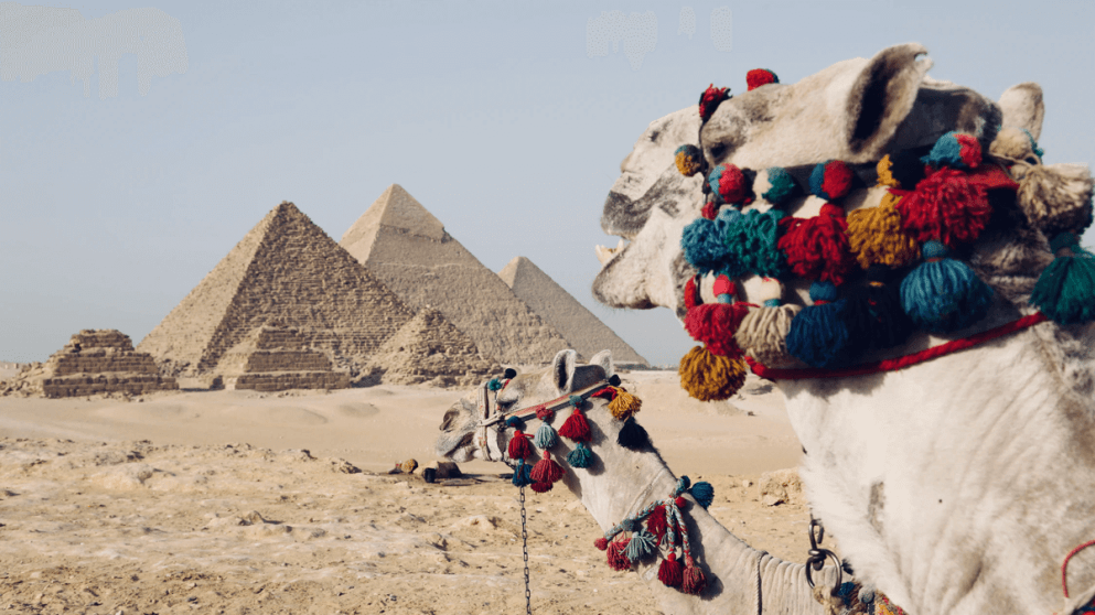 What Language Is Spoken In Egypt?