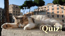 Quiz: How Well Do You Know Italian Animal Names?
