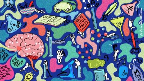 Tout comprendre aux différentes familles de langues : la typologie linguistique
