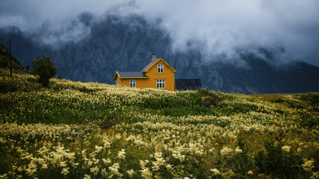 The Top 5 Reasons To Learn Norwegian
