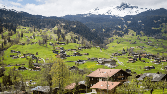 What's The Difference Between Standard German And Swiss German?
