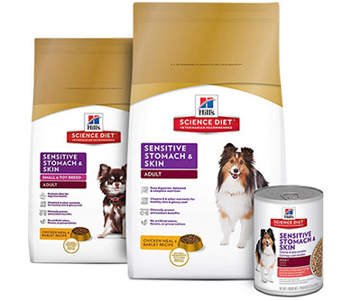 Best Puppy Food For Sensitive Stomach And Diarrhea