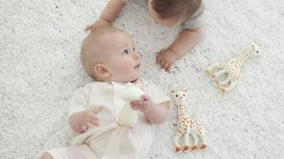 sophie the giraffe why