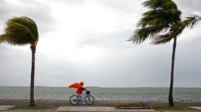 hurricane irma what you