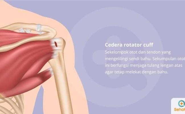 Cedera Rotator Cuff Gejala Diagnosis Pengobatan