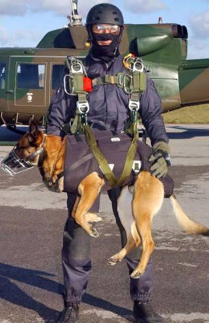 Airborne Dog!