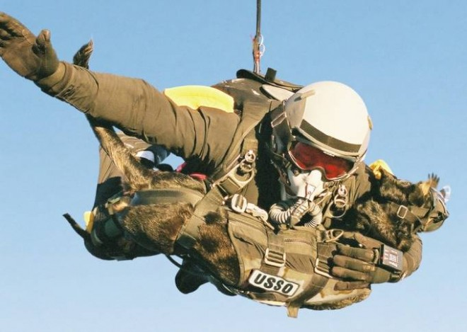 Highest Man-Dog Parachute Deployment