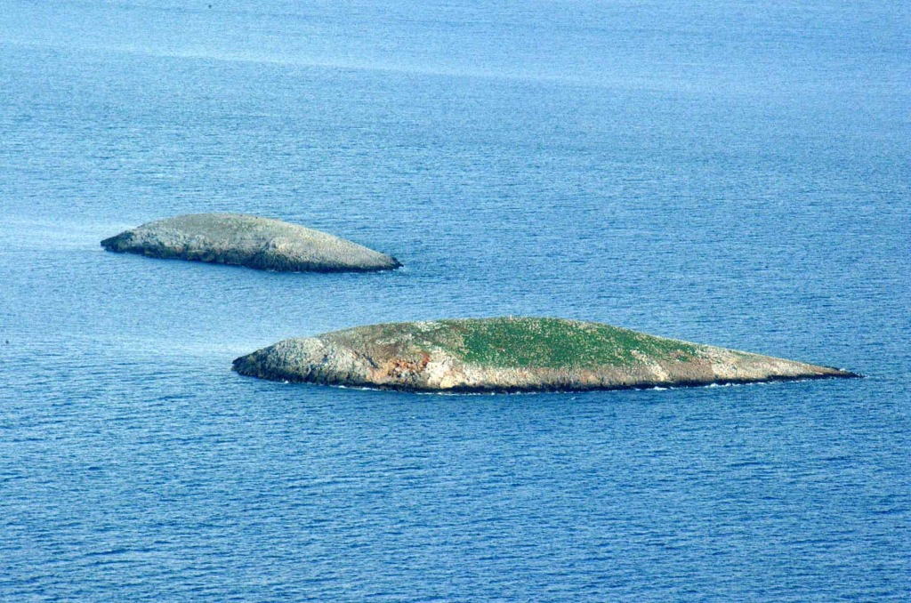 Mia Islets. In the foreground the western Imia islet where the SAT team landed