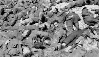 Born in blood - Landing at Dieppe N. France 19 August 1942