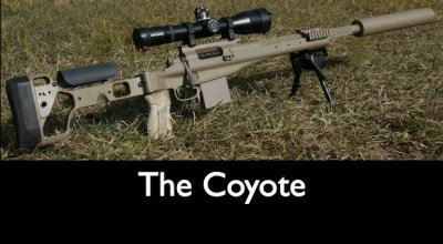 The Coyote – Reviewed By Rob Furlong