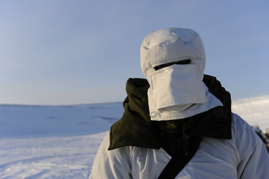 Canadian soldier in the Arctic