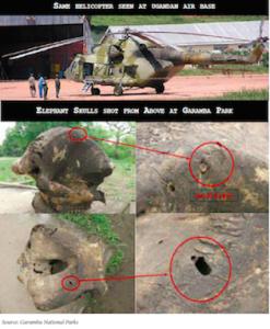Ugandan-Helicopter-Hunting