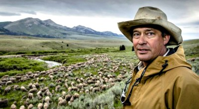 Duckworth – The Working Man's Wool