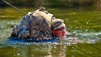 Ranger Resuscitates Child Drowned in Swimming Pool