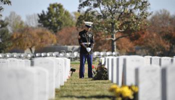 Study finds 50% higher veteran suicide rate over civilians