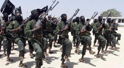 Somalia's al-Shabab 'seizes missile armed drone'