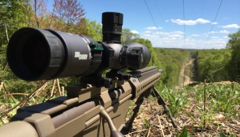 Sig Optics Tango 6 Rifle Scope: First Look