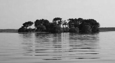The Nazino Affair: Russia's Cannibal Island