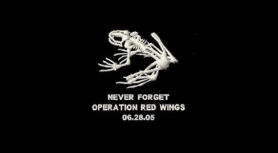 Operation Red Wings II: Lone Survivor recovery operation (Part I)