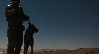 US Military's working dogs are the worst nightmare for the enemy