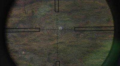 Long Range Shooting: Triangulate distance with your scope
