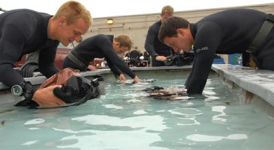 First female prospect for Navy SEAL training drops out during selection course